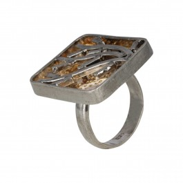 Graphical Branches Ring